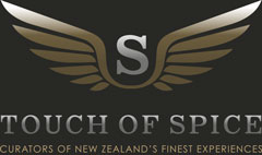 touch-of-spice-digital-marketing
